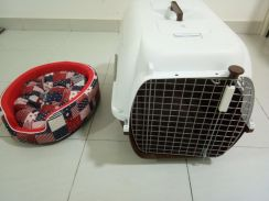 Accessories for cat/dog