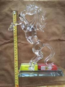 Horse( fragile