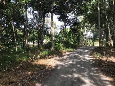 Tanah 2.06 Ekar, Malay Reserved, Ulu Beranang, Lenggeng, Broga