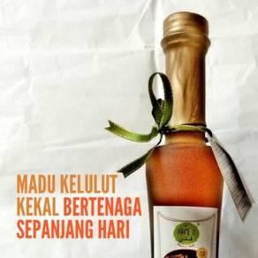Madu Kelulut - Benefits of Stingless Bee Honey