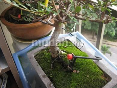 Balcony Auto Watering Kit