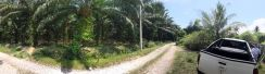 Klebang #Freehold Agriculture land for sale in Ipoh Perak