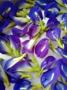 Dried Clitoria Ternatea (Blue Pea Flower)