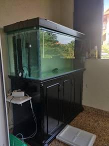 4.5 Feet aquarium