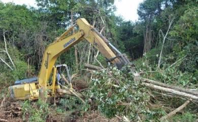 Korek akar kayu & Pasang pagar pro & Kawat Duri