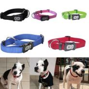 DogIt Dog collar