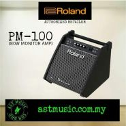 Roland Pm100 PM100 V-Drum Monitor Amplifier