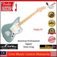 Fender American Pro Jaguar Electric Guitar MSG