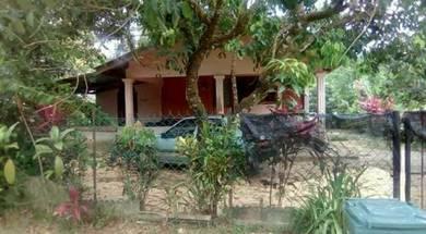 Rumah untuk dijual di kampung paloh hinai