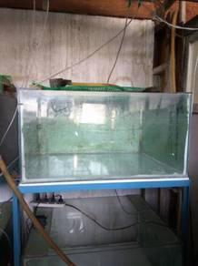 Commercial Aquarium Tank Set For Sale