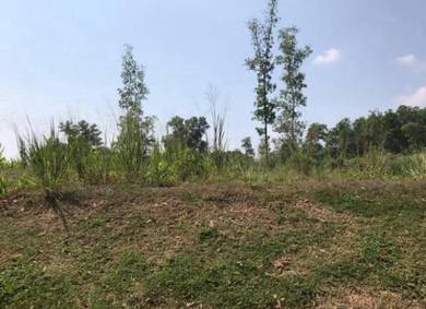 Sungai Lalang 9 acres land for sale