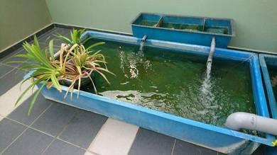 Aquarium fish tank fiber tank 6x3x1