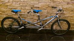 0% GST Bicycle 21Sp Tandem Basikal Alloy-Factory