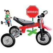 Educational Tricycle (ITSP-016)