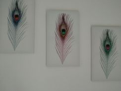 Set of 3 canvas wall photos