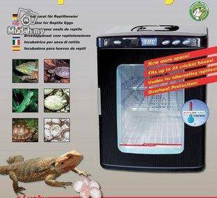Reptiles chameleon tortoise egg hatcher incubator