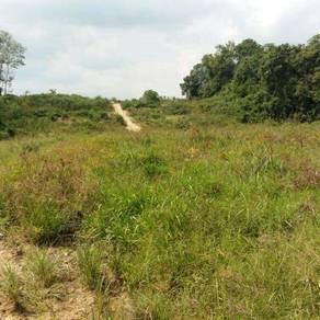 Tanah untuk disewa pertanian jangka pendek