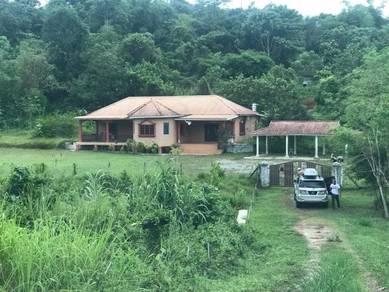 Tanah tepi jalan grik 4.48 ekar percuma rumah banglo 4200 kp