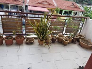 RENO BALCONY | Selayang Sri Gombak [ KINI SENANG MILIKI ]