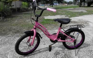 Basikal rim16 pink