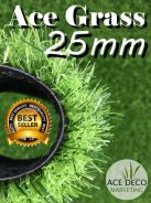 Premium 25mm Artificial Grass / Rumput Tiruan 01