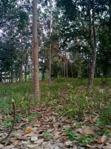 Tanah Cantik di Ulu Beranang, Lenggeng, Negeri Sembilan
