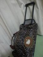 Kitty trolly bag
