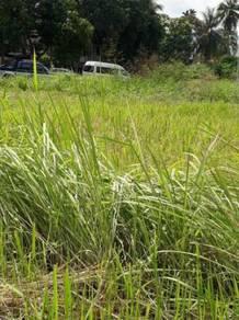 Land at Pokok Sena 22 acres , RM 11 per sq ft