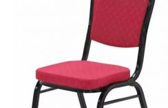 Elegant Black Frame Banquet Chair