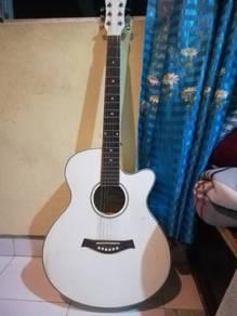 Darling Acoustic Gitar