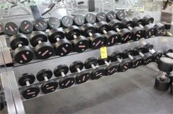 Dumbbell Made in USA and Italy(USED) for Gym