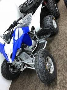 ATV NEW 250cc new LEM