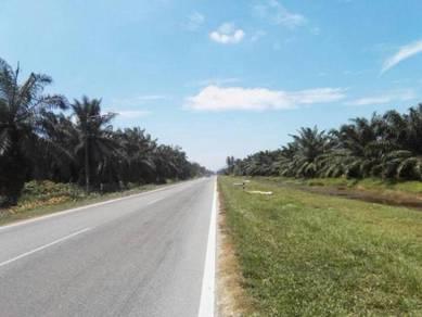 Agricultural land 6.24 acre changkat batu kawan jawi penang