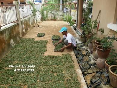 Service Rumah Tanam Rumput Pokok Jepunn call ne