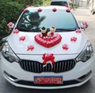 Wedding Car Decorate