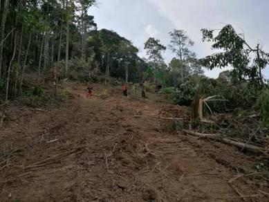 Lot Tapak Banglo Esklusif Taman Warisan Jerantut