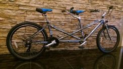 0% GST 2Seats Bicycle 26