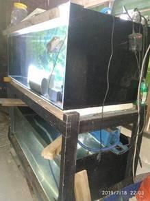 Aquarium akuarium fish tank