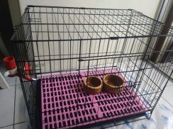 Pet cage package - economy