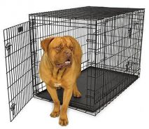 Big 4Feet Dog Cage