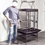 Big Heavy Duty Parrot Cages 4 Large Parrot A19
