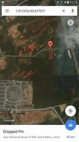 Skudai Area - Agriculture land - Opposite Sutera Mall -