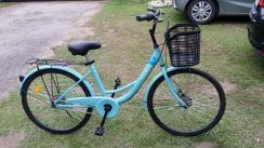 Imported City Bicycle from China: Unibike