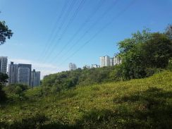 Segambut Malay Reserved Land