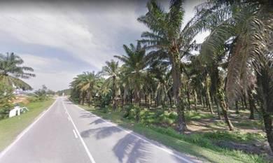 Jalan tanjung kupang 6.5 acres industrial land
