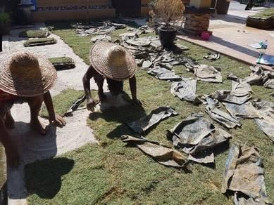 Service Tanuam rumput pokok artificial potng pokok