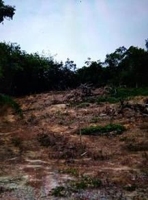 Tanah tapak rumah untuk di jual, Mentakab