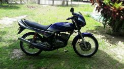 1995 or older Yamaha rxz