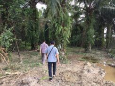 Bidor sungkai 6 acres land