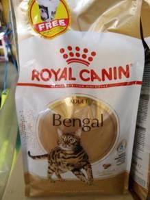 Supply Makanan Kucing Bengal